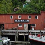 Telegraph Cove - zur Nebensaison ein wahrliches Nest ;-)