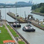 Die Schleppschiffe unterstützen die grossen Schiffe bei der Einfahrt in die Schleusen.