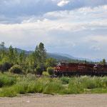 Kurz vor Golden überholen wir die Canadian Pacific Railway.
