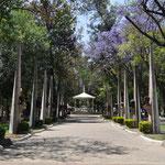 Der etwas ausserhalb liegende Parque Morelos.