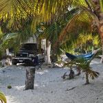 Stellplatz unter Palmen beim Playa Las Palmas.