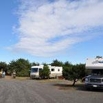 """Zwei Tage """"Nichtstun"""" auf dem strandnahen Campground in Charleston."""