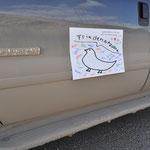 Zum Glück sass die Taube auf der Rückbank im Truck, sonst wäre sie jetzt ebenfalls eingestaubt :-)