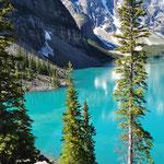 Einfach nur wunderschön und sehr eindrücklich mit den Bergen im Hintergrund.