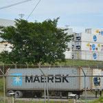 Entsprechend viele Lastwagen und Container stehen hier für die Verteilung der Früchte bereit.