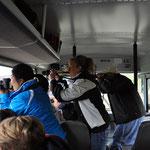 Tier-Sichtung... jeder ist mit irgendetwas bewaffnet - Feldstecher, Fotokamera, Videokamera, Natel, I-Pad...
