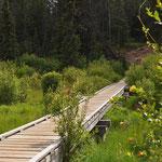 """Der Valley of The Five Lakes Trail beginnt mit einem """"boardwalk""""."""