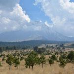 El Popo versteckte sich bei unserer Ankunft auf dem Pass in den Wolken.