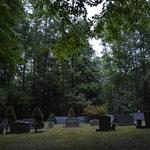 Nachts auf dem Friedhof, warten auf die Glühwürmchen.