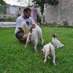 Schon kurze Zeit nach unserer Ankunft haben wir mit den Hunden Freundschaft geschlossen.
