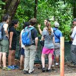 Eine Gruppe mit ihrem Guide bei der Tier-Beobachtung.