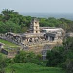 Die Ruinen liegen zum Teil mitten im Dschungel. Viele davon sind noch nicht ausgegraben worden.