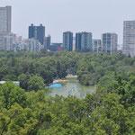 Ausblick auf den Lago Chapultepec und die Hochhäuser von Mexiko-Stadt.