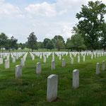 Gräber, Gräber und nochmals Gräber. Mehr als 200'000 Stück. Kriege fordern ihre Opfer - auf beiden Seiten.