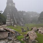 "Auch der wohl bekannteste Tempel, der ""Grosse Jaguar"" war noch umhüllt."