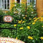 Lübeck Ferienwohnung, Altstadthaus, Gartenhaus Rosenruine