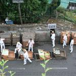 Villenviertel Monte - die Heimat der Korbschlittenfahrer
