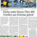 2019 07 05 Fische unter Strom, über 400 Forellen aus Schönau geholt
