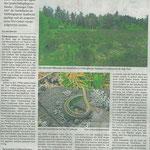 2016 08 26 Projekt zur Pflege der Heide im Stadtwald ist gestartet