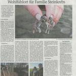 2019 12 13 Wohlfühlort für Familie Steinkrebs