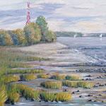Elbe am 2. Mast  zwischen Hetlingen und Haseldorf, Nahe des Julssand Leuchtturms 40 x 50 Öl plein air