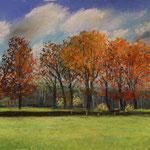 Herbststimmung am Holmer Wald 30 x 40 Pastell