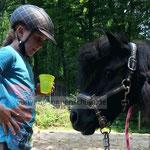 Die Kommunikation mit den Ponys ist bei den Reitferien wichtig