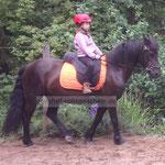 Selbstsicherheit hilft auch dem Pony, weil es sehr feinfühlig ist