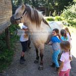 ja so ein Pony hat ein Gewicht und wir lernen Respekt und Achtsamkeit