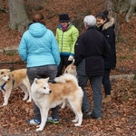 © Schweizer Klub Asiatische Spitze | Samichlaus-Spaziergang 2016