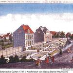 Botanische Gärten - früher und heute