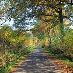 Münsterland fietsen en wandelen