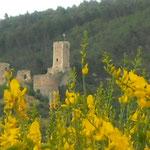 Castello Cantelmo (Pe)