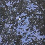 Purple moon, oil on linen, 50x35cm, 2019