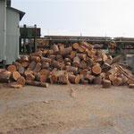 ①薪の原料となる、木を切った時に出る根の部分(どんころ)です。