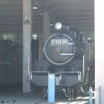 C51 239(2010年8月)