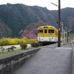 キハ58 554(2009年3月)