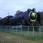 D51 300(2014年11月)