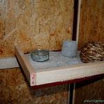 Pickbox und Trippelplatte - Den Rand kann man zum Säubern anheben, um den Sand leichter zu entfernen.