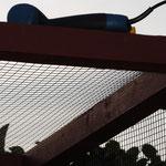 Ein Teil der Verdrahtung auf dem Dach ist angebracht!