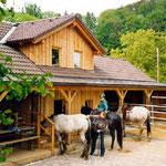 Öko-Offenstall Appenzeller; Natur, Ruhe und Entspannung in der Nähe von Linz.