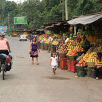 A lot of fruits along the road.