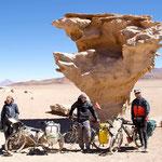 day-519 // Arbol de Piedra, Bolivia - 05.11.2014 (km 19'910)
