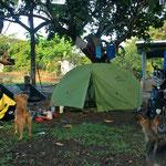 day-353 // campsite, Panama - 23.05.2014 (km 13'230)