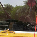 day-308 // San Pedro la Laguna, Guatemala- 08.04.2014 (km 11'215)