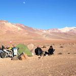 day-523 // Campsite, 7 km before laguna blanca, Bolivia - 09.11.2014 (km 20'023)