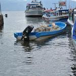 Notre bateau / our boat
