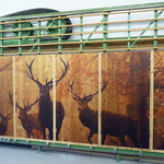 XL-Direktdruck auf Holz für Wandverkleidung