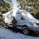 Moby coverd under Tasmanian snow