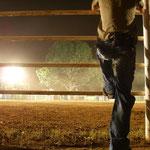 Rodeo in Daily Waters, zeitvertreib im Busch..nur für die harten Jungs